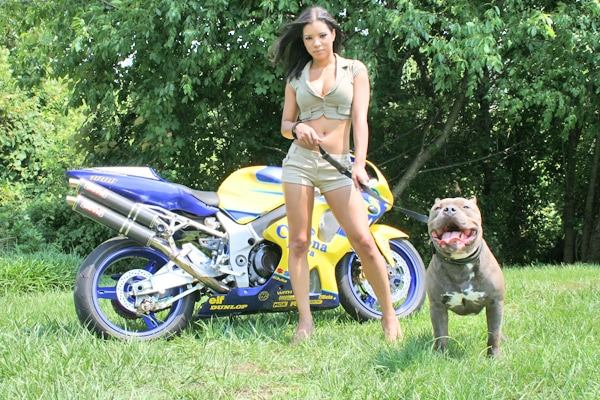 devils-den-bullies-chicks-with-pits-005