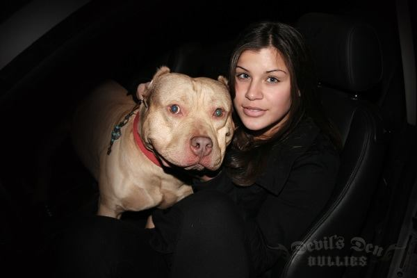 devils-den-bullies-chicks-with-pits-034