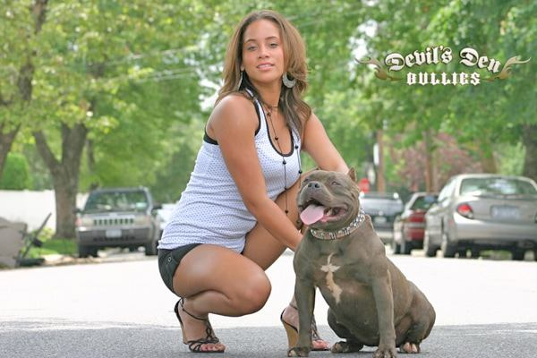 devils-den-bullies-chicks-with-pits-036