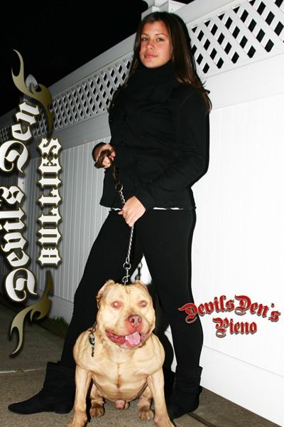 devils-den-bullies-chicks-with-pits-060