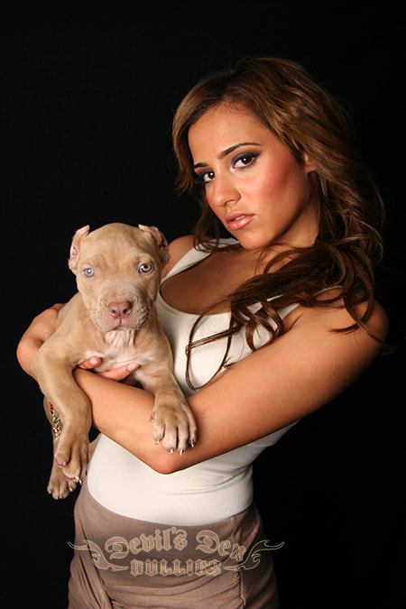 devils-den-bullies-chicks-with-pits-061