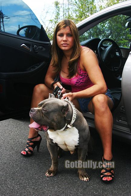 devils-den-bullies-chicks-with-pits-075