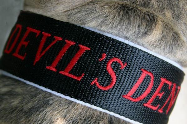 devils-den-bullies-devils-den-world-080