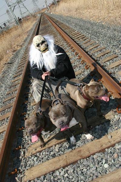 devils-den-bullies-doggy-style-031