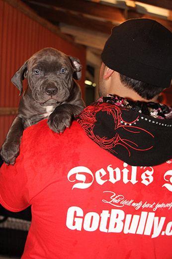devils-den-bullies-history-078